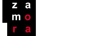 Transvallas Zamora Logo
